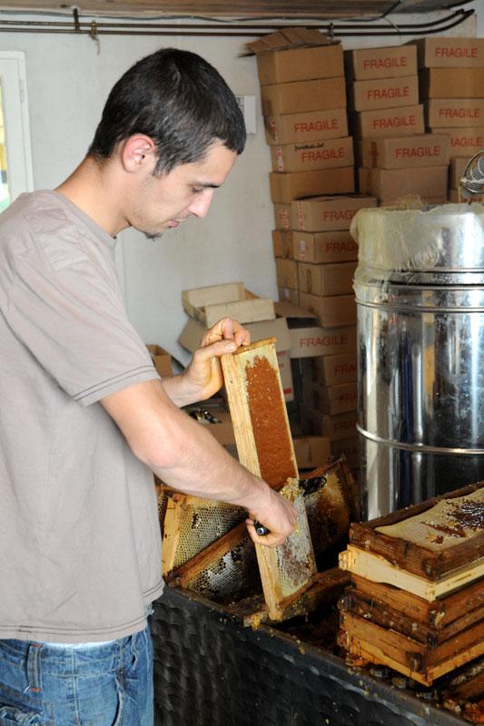 apiculteur heric