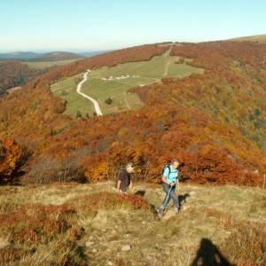 Vosges13