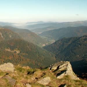Vosges18