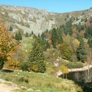 Vosges4