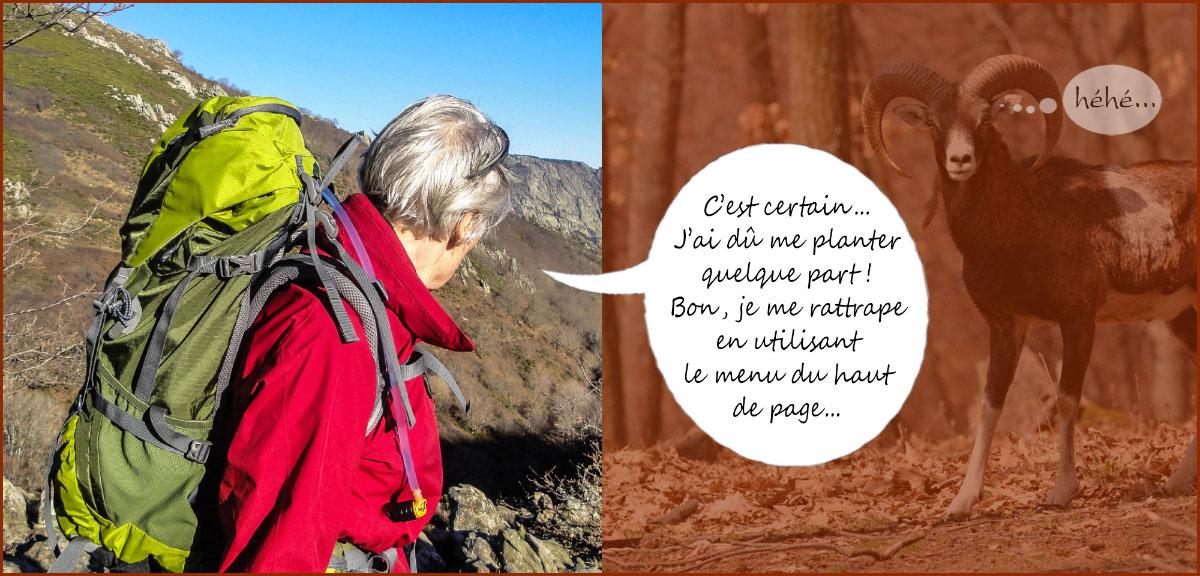 Montagne du Haut Languedoc. Page erreur 404