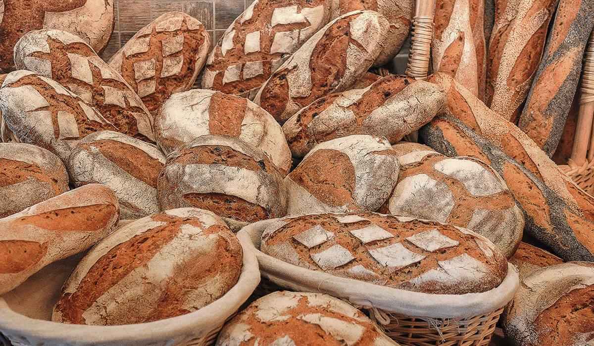 Paysans-boulangers de La Fajole en Haut Languedoc, la production