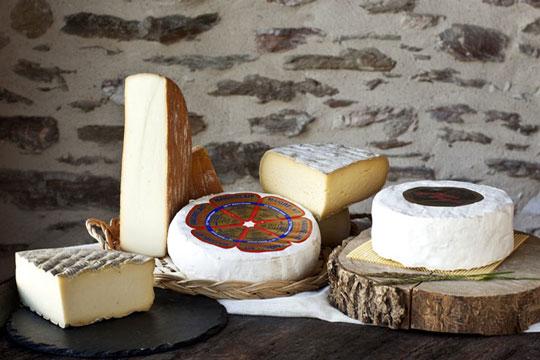 Fromages des Monts de Lacaune. Laiterie Fabre Frères. Choix de fromages