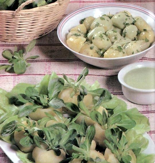 Salades de pommes de terre en pique,fleur et sauce verte
